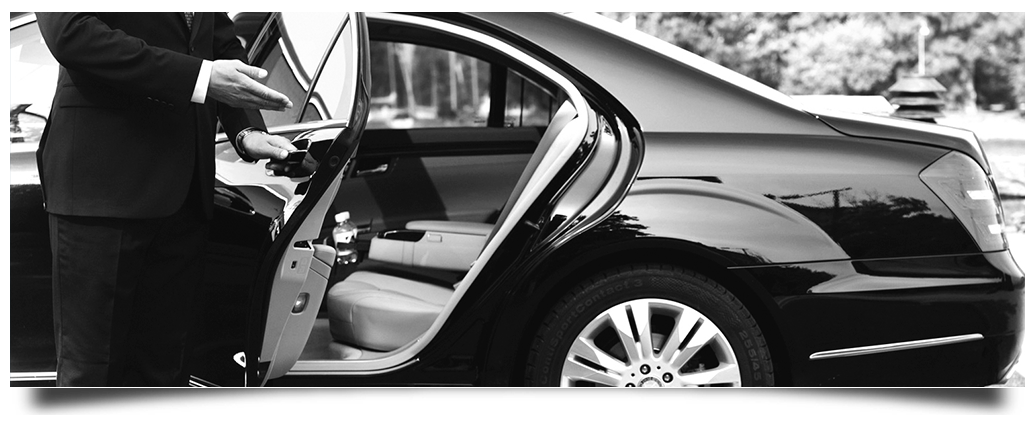 Private Driver and Car Nice Airport Transfer